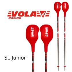Bâtons slalom junior aluminium + Protection World Cup