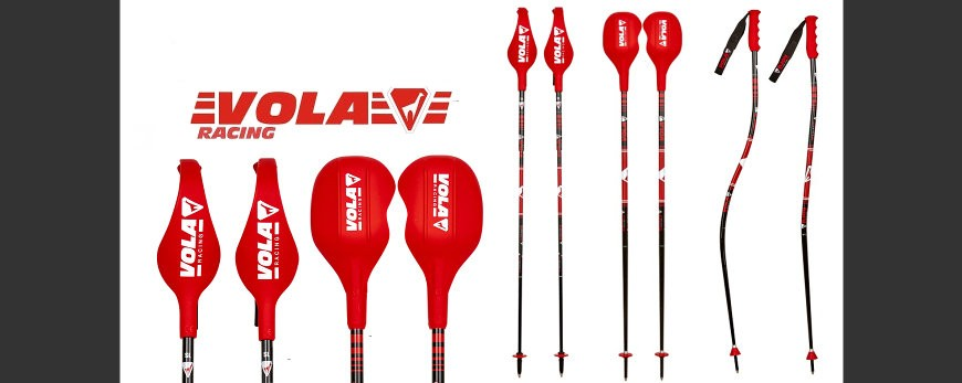 Bastones de competición de esquí con protecciones